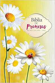 Biblia de promesas mujeres