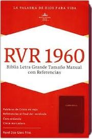 Biblia Holman manual LG rojizo
