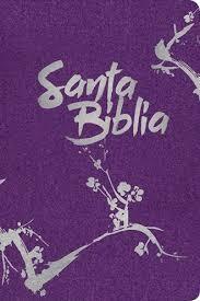 Biblia NTV crem purpura