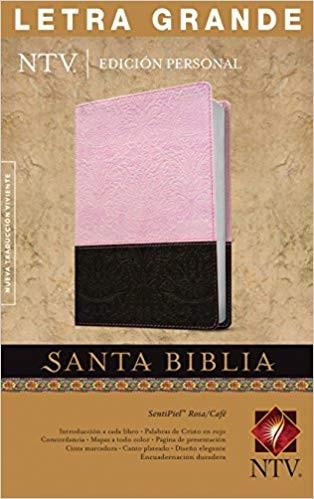 Biblia ed. personal rosa cafe