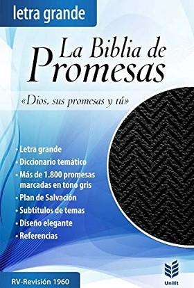 Biblia promesas 02894