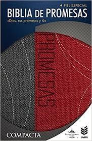 La Biblia de promesas RVR 1960, Piel especial Gris/roja, compacta, Letra grande 10.5x17 cms.